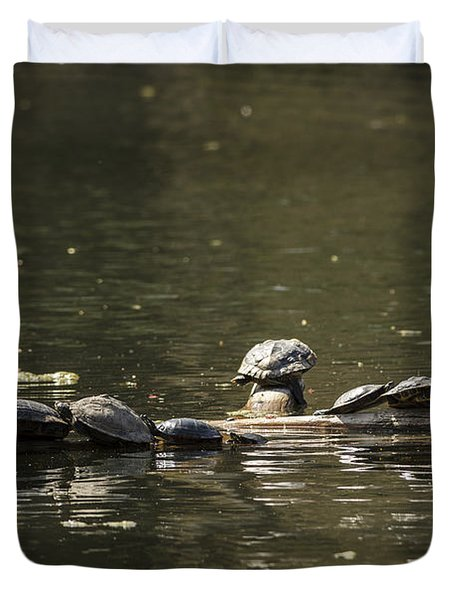 Turtles Sunning Duvet Cover