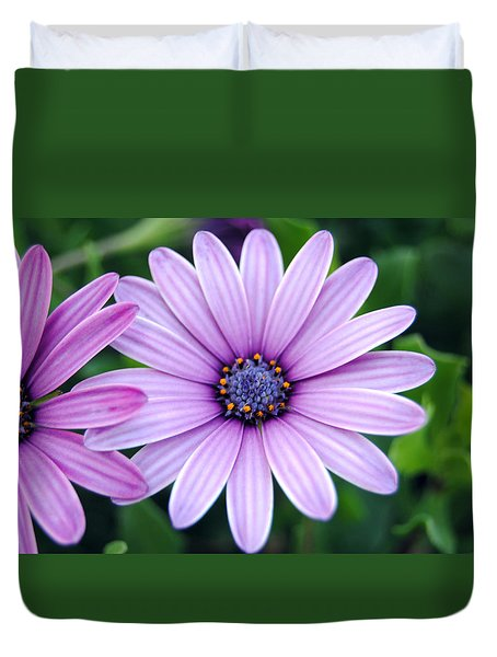 The African Daisy 3 Duvet Cover
