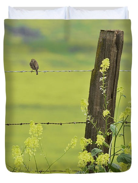 Warbler In The Meadow Duvet Cover by Debby Pueschel