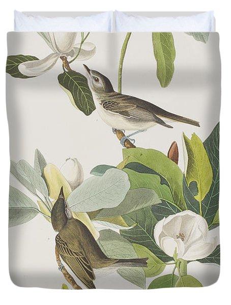 Warbling Flycatcher Duvet Cover by John James Audubon