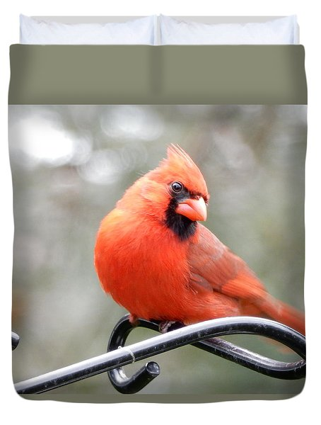 Duvet Cover featuring the photograph What Was That.. by Betty-Anne McDonald
