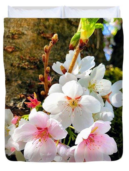 White Apple Blossom In Spring Duvet Cover