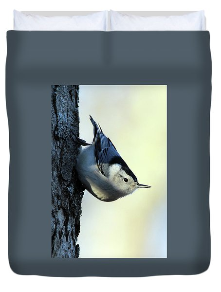 White Breasted Nuthatch Wading River New York Duvet Cover
