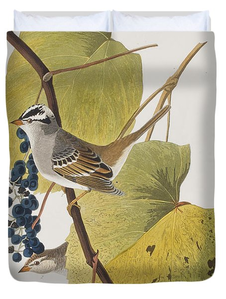 White-crowned Sparrow Duvet Cover by John James Audubon