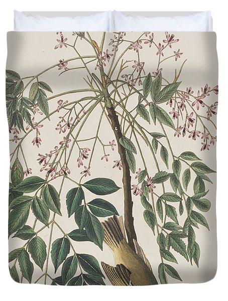White-eyed Flycatcher Duvet Cover by John James Audubon