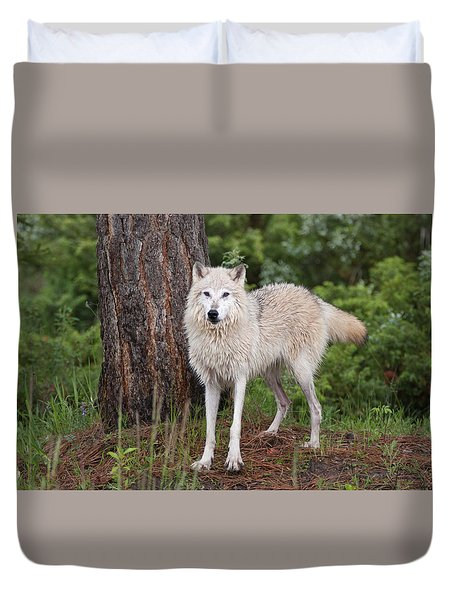 White Wolf. Duvet Cover