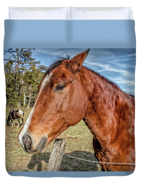 Duvet Cover featuring the photograph Wild Horse In Smoky Mountain National Park by Peter Ciro
