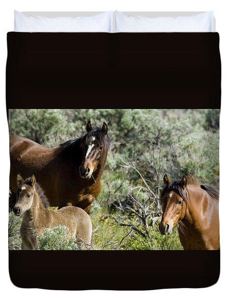 Wild Mustang Herd Duvet Cover