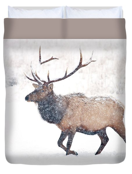 Duvet Cover featuring the photograph Winter Bull by Mike Dawson