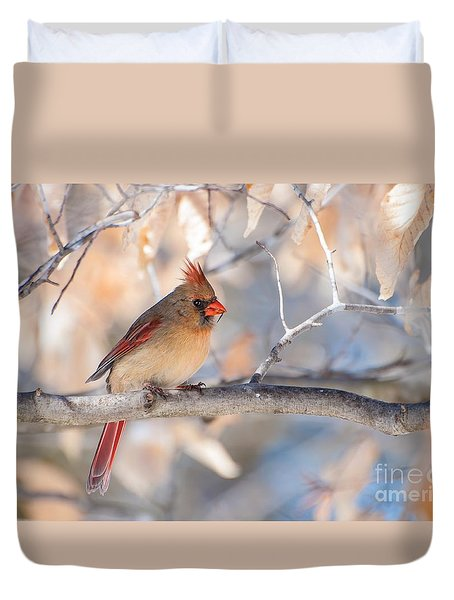 Winter Cardinal Duvet Cover