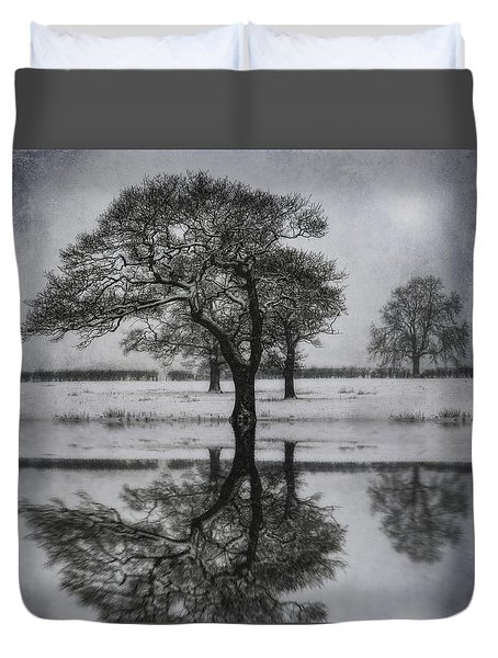 Winter Lake Duvet Cover by Ian Mitchell