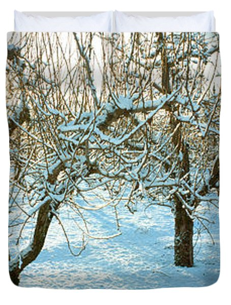 Winter Morning In The Pear Orchard Duvet Cover