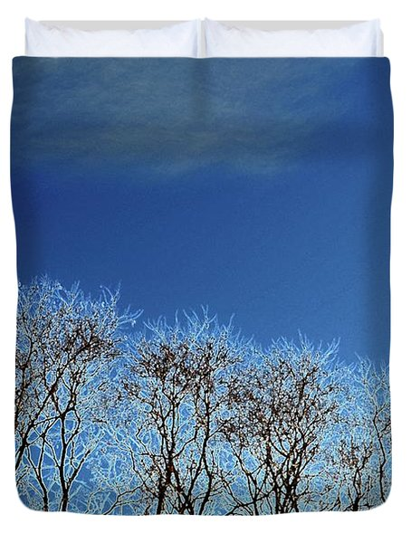 Winter Trees And Sky 3  Duvet Cover
