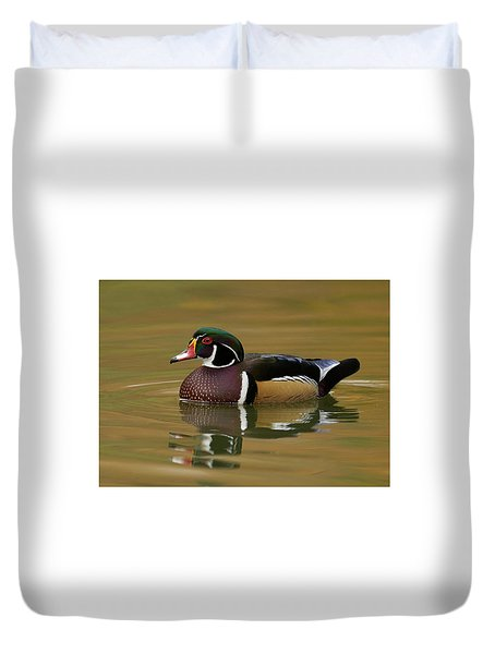 Wood Duck Duvet Cover by Doug Herr