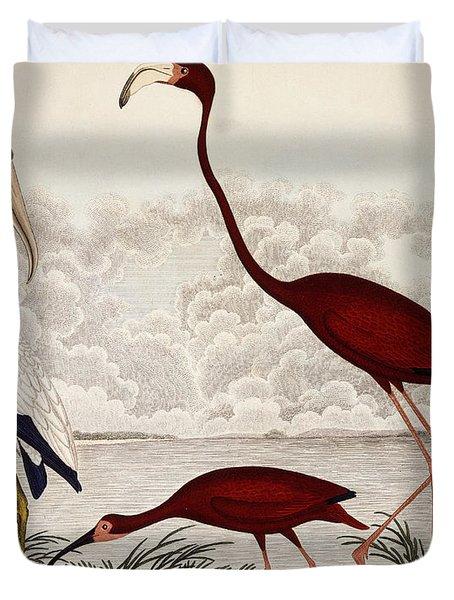 Wood Ibis, Scarlet Flamingo, White Ibis Duvet Cover