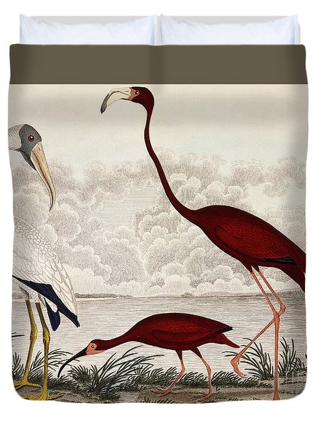 Wood Ibis, Scarlet Flamingo, White Ibis Duvet Cover