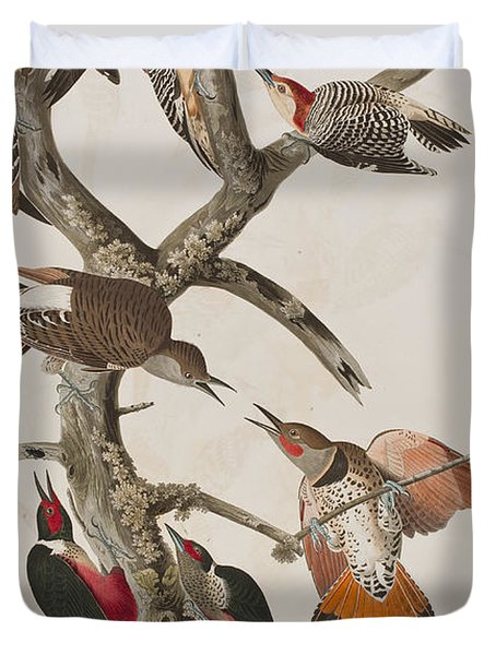 Woodpeckers Duvet Cover by John James Audubon