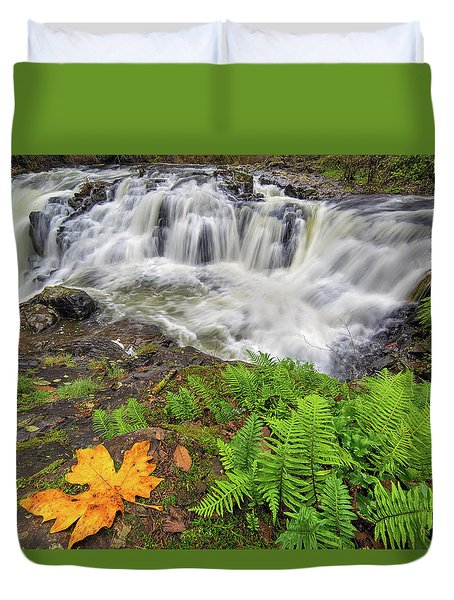 Yacolt Falls In Autumn Duvet Cover by David Gn
