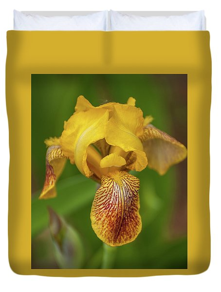 Duvet Cover featuring the photograph Yellow Bearded Iris by Brenda Jacobs