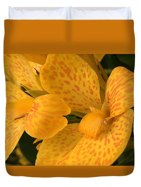 Yellow Lily Duvet Cover by Kay Gilley