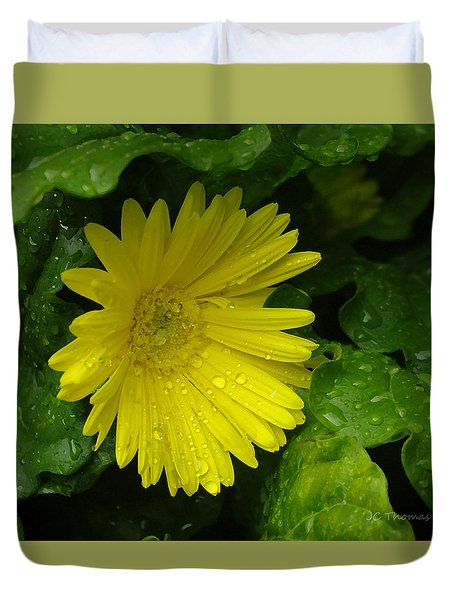 Yellow Gerbera Daisy  Duvet Cover