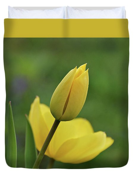 Duvet Cover featuring the photograph Yellow Tulips by Sandy Keeton