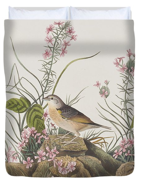 Yellow-winged Sparrow Duvet Cover by John James Audubon