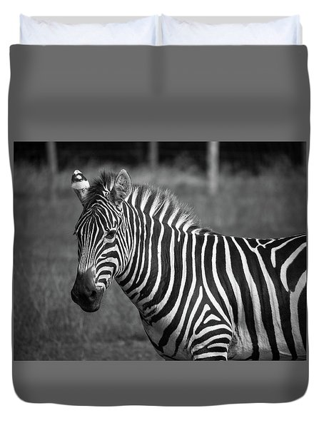 Duvet Cover featuring the photograph Zebra by Trace Kittrell