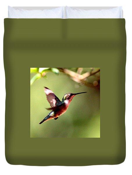 103456 - Ruby-throated Hummingbird Duvet Cover