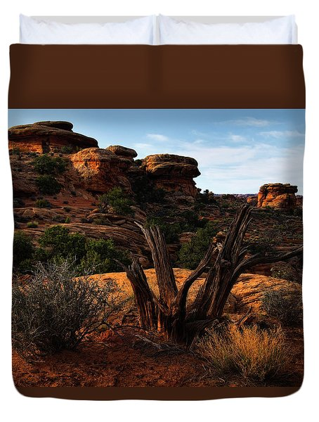 Canyonlands National Park Utah Duvet Cover