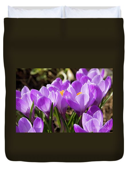 Purple Crocuses Duvet Cover