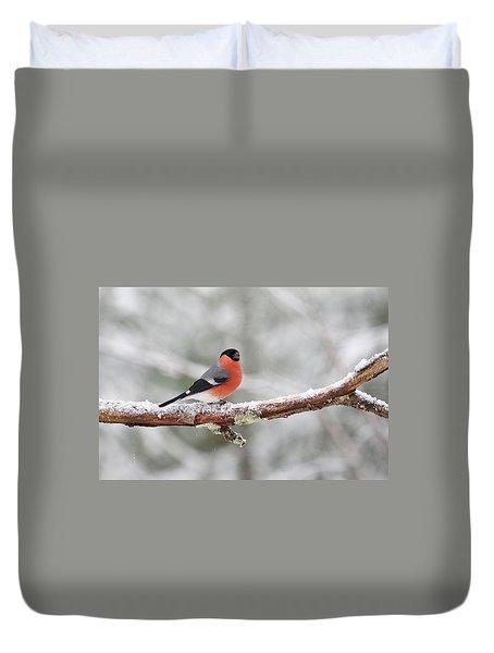 Eurasian Bullfinch Duvet Cover