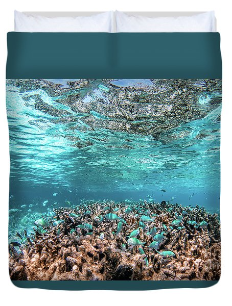 Underwater Coral Reef And Fish In Indian Ocean, Maldives. Duvet Cover