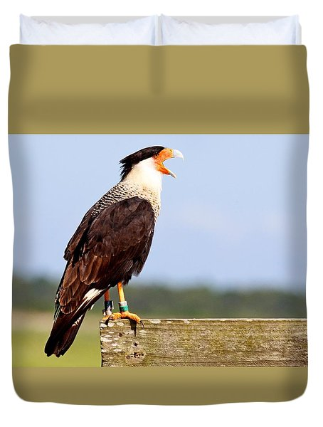 Crested Caracara Duvet Cover