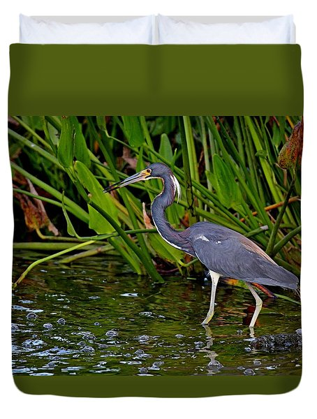 Tri-colored Heron Duvet Cover