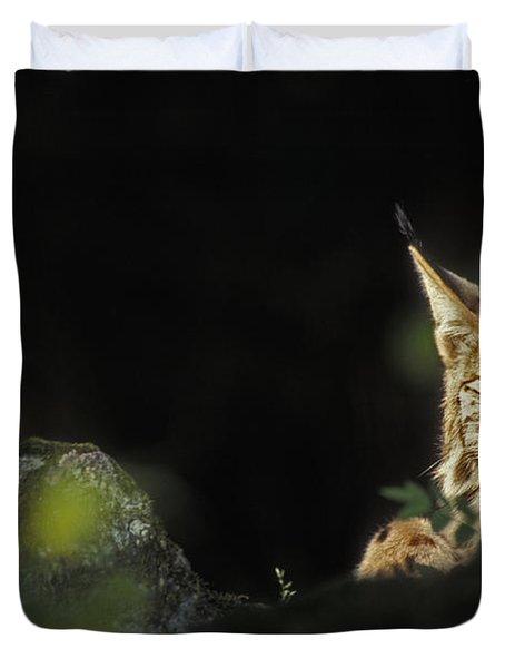 151001p105 Duvet Cover