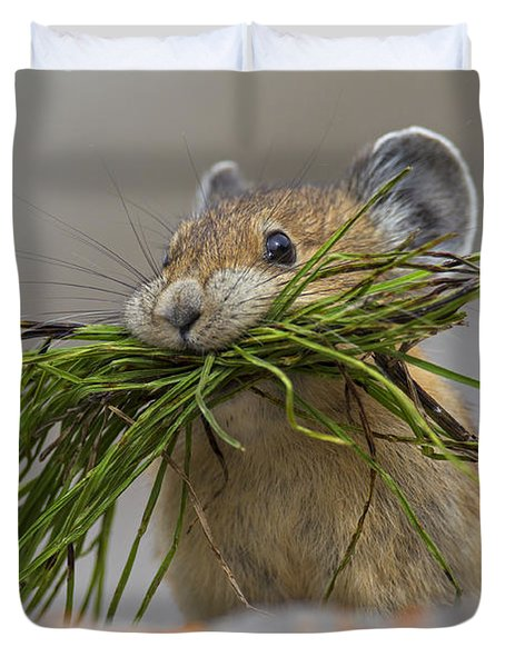 Pika With A Mouthful  Duvet Cover