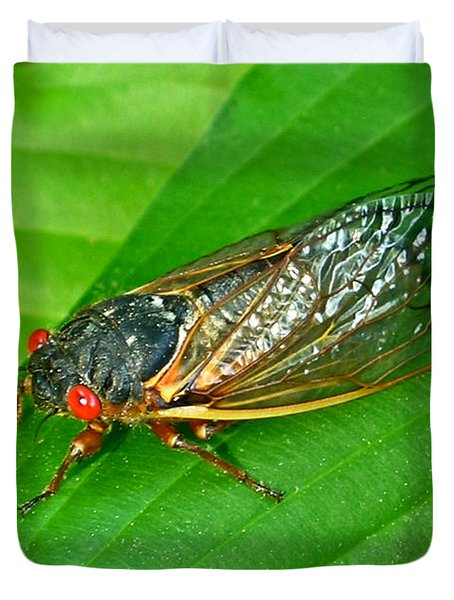 17 Year Periodical Cicada Duvet Cover by Douglas Barnett