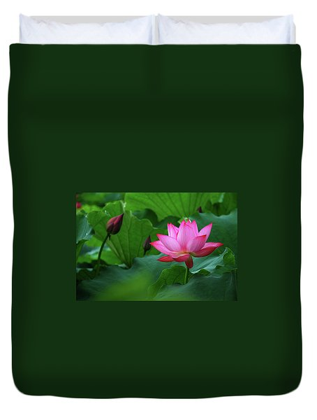 Blossoming Lotus Flower Closeup Duvet Cover