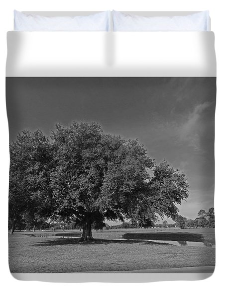 Louisiana Live Oak Tree Duvet Cover by Ronald Olivier