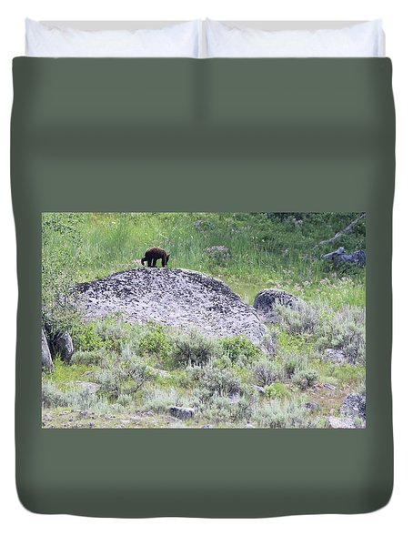 American Black Bear Yellowstone Usa Duvet Cover