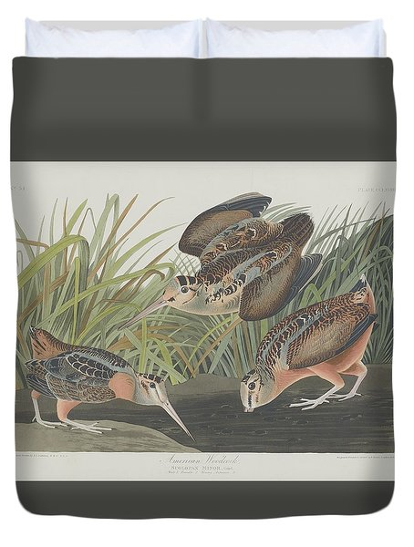 American Woodcock Duvet Cover by Dreyer Wildlife Print Collections