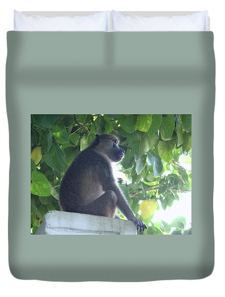 Baboon Sits Guard  Duvet Cover