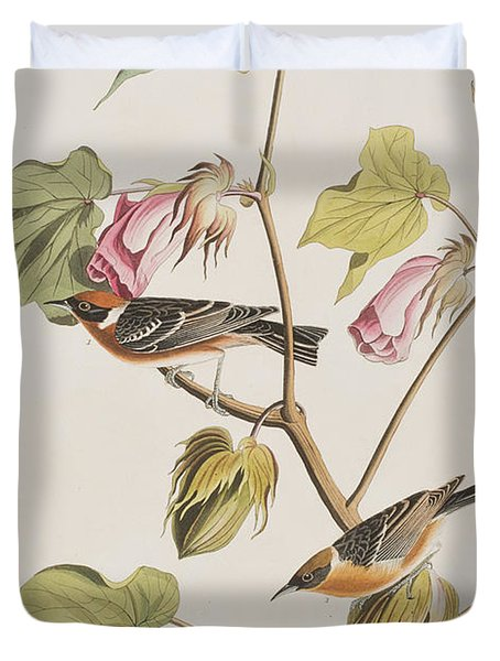 Bay Breasted Warbler Duvet Cover by John James Audubon