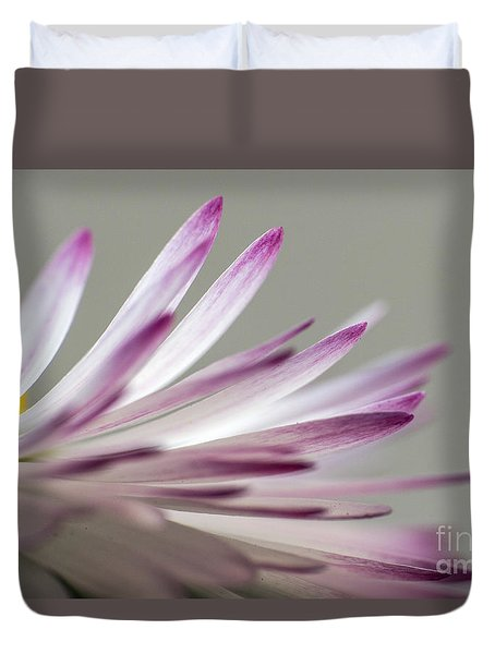 Beautiful Colorful Image About Daisy Flower Duvet Cover