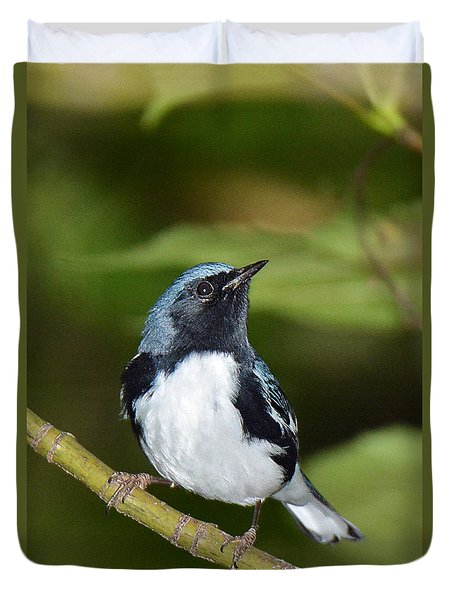 Black-throated Blue Duvet Cover