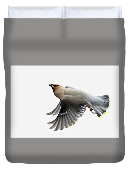 Duvet Cover featuring the photograph Bohemian Waxwing  by Mircea Costina Photography