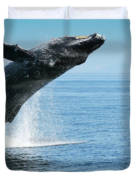 Breaching Humpback Whales Happy-1 Duvet Cover