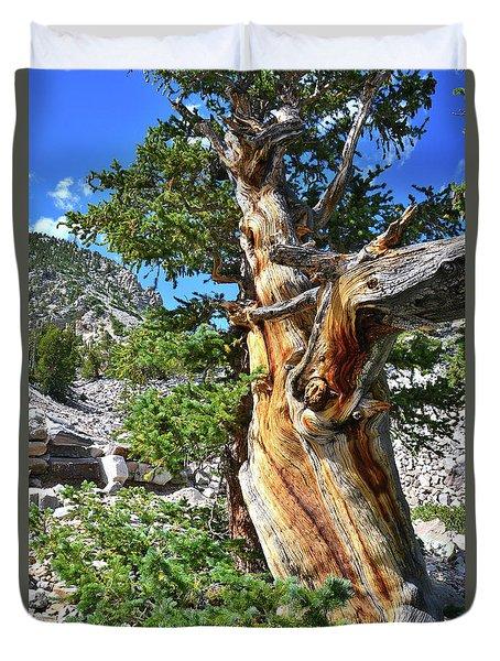 Bristlecone Loop Trail Duvet Cover
