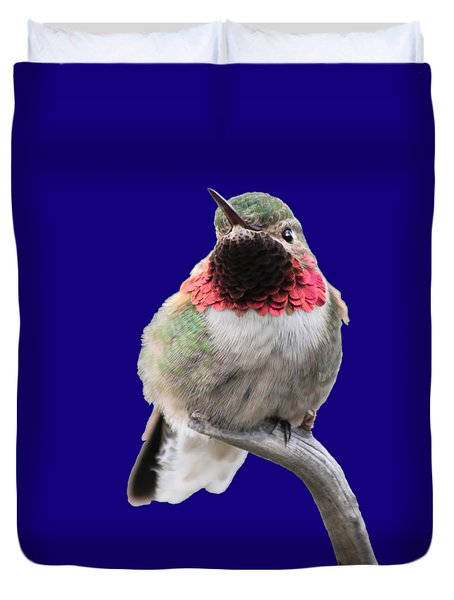 Broad-tailed Hummingbird Duvet Cover